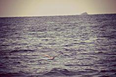 Volare rasentando il mare.