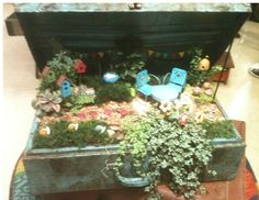 A fairy garden created in a suitcase from the Atlanta market.
