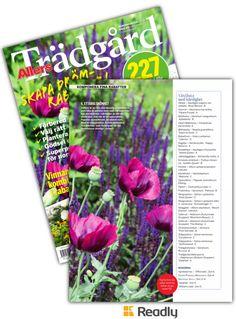 Tips om Allers Trädgård 17-05 sidan 36