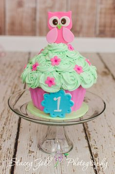 Cake Smash Photography | Custom cupcake cake / owl theme / Pink , Green , and Blue . Photo by Stacey Zoll Photography / Kansas photographer