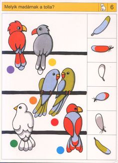 Piccolo: kat kaart 6 Toddler Learning Activities, Preschool Games, Free Preschool, Montessori Activities, Preschool Worksheets, Logic Math, Maths, File Folder Activities, Nursery School