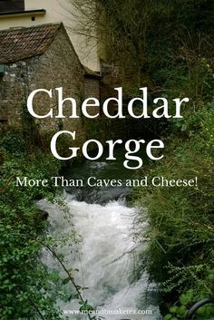 Cheddar Gorge – More than Caves and Cheese! I absolutely love the village of Cheddar and Cheddar Gorge. It is completely beautiful and I love ambling up the gorge and mooching in the shops. Out of season, it is really quiet and you can park for free on th Travel With Kids, Family Travel, Cheddar Gorge, Best Travel Quotes, Best Inspirational Quotes, Amazing Quotes, Travel Alone, Australia Travel, Australia Beach