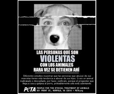 Violencia familiar: ¿Su origen en el maltrato animal?