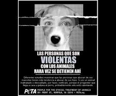 Violencia familiar: ¿Su origen en el maltrato animal?