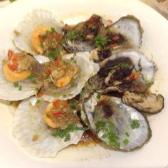 Scallops & oysters