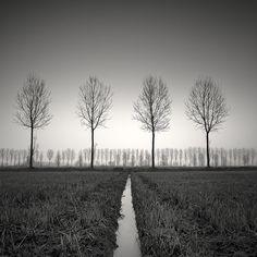 4:2, photographie de Pierre Pellegrini