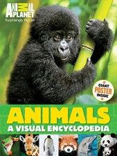 Animals: A Visual Encyclopedia from Animal Planet. If you have an animal lover or a nonfiction reader in your house, look for this visual encyclopedia at your local library or give it as a birthday gift. Human Giant, Planet Books, Amazing Animals, Santas Workshop, Animal Books, Science Books, Library Science, 9 Year Olds, Chapter Books
