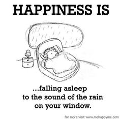 Happiness #135: Happiness is falling asleep to the sound of the rain on your window.