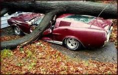 WRECKED MUSCLE CAR