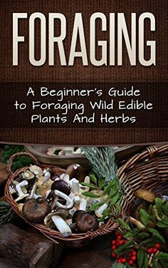 FREE TODAY Foraging: A Beginner's Guide to Foraging Wide Edible Plants and Herbs (Foraging, Survival, Homesteader Book 1) by Carmel Maher http://www.amazon.com/dp/B012O6PJ8K/ref=cm_sw_r_pi_dp_jiYYvb1SDZFYT
