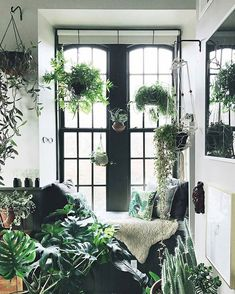 Doesn't this look like the perfect spot to enjoy a quiet moment amidst the holiday craziness?  :@hiltoncarter #urbanjunglebloggers