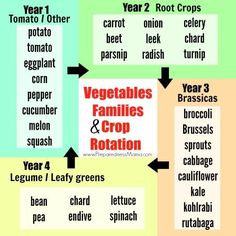 Crop rotation helps keep the soil healthy because each different plant family draws on different soil nutrients and is attacked by different pests. By rotating the families through your beds, you can give the soil a break but still use all available growing space.