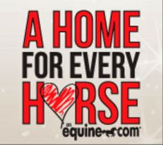 Equine.com & the Equine Network are joining forces with the American Horse Council's Unwanted Horse Coalition to help find homes for America's 170,000 to 200,000 horses in need of care and shelter.
