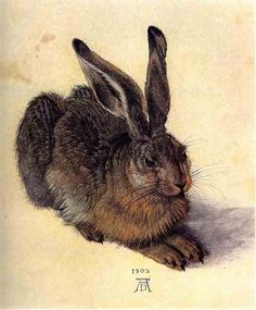 Albrecht Dürer, Young Hare, 1502  My all time favourite rabbit painting!