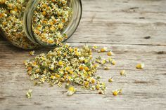 The best natural hayfever remedies and relief to try this summer Sunburn Remedies, Home Remedies, Natural Remedies, Healing Herbs, Medicinal Plants, Herbal Plants, Herbal Teas, Holistic Healing, Herbal Hair Dye