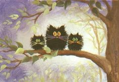 Scaredy Cats in a Tree (They look like an owls to me :D)