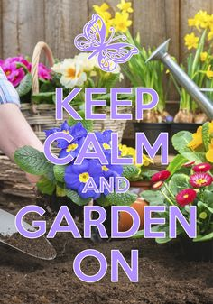 keep calm and garden on / created with Keep Calm and Carry On for iOS #keepcalm #garden #plantflowers