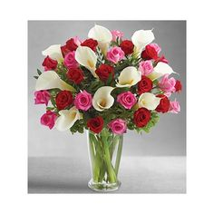 Roses, being the eternal queens of the flower kingdom are always the most beautiful ways of reaching out to a lady's heart. Rose Vase, Flower Vases, Send Roses, Rose Delivery, Online Flower Shop, Rose Lily, Anniversary Flowers, Online Florist, Everlasting Love