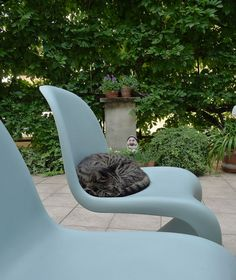 Panton Chair seems to be very comfortable.
