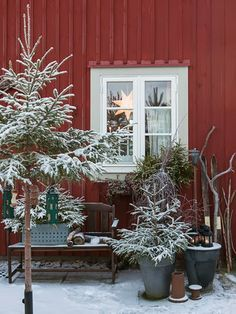 ✿Christmas outdoors