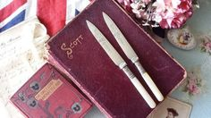 2 Sweet Vintage Mother of Pearl Handle Plated Butter Knives