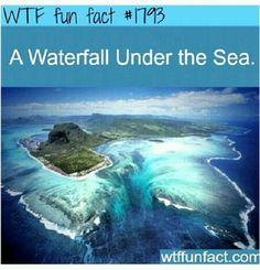 Waterfall Under the Sea