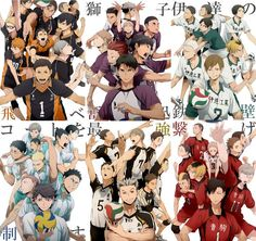 Karasuno, Shiratorizawa, Date Tech, Aoba Johsai, Fukurodani, Nekoma PS: I love them all