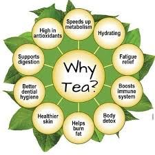 Which tea is good for weight loss?The Metabolism Booster: Green Tea. Drink this: Lipton, Yogi. ...  The Pound-a-Week Melter: Oolong Tea. ...  The Cravings Crusher: Mint Tea. ...  The Fat Blocker: White Tea. ...  The Hunger Halter: Rooibos Tea. ...  Melt up to 10 pounds in one week—while drinking tea and eating clean—with The 7-Day Flat-Belly Tea Cleanse—availabl
