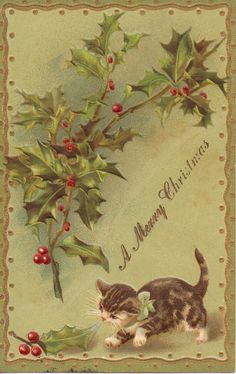 You can find themes to collect fairly easily, and that helps unify everything a bit if you want to display them. Otherwise, if you are like me and like to collect any that catch your eye, you can rotate collections with the seasons etc...   A Merry Christmas Postcard with Cat Under Holly by OldFangledFinds, $5.00