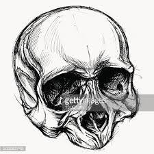 Image result for skull art design