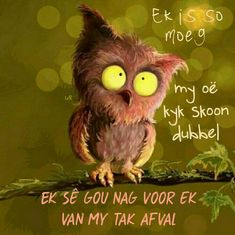 Good Night Quotes, Good Morning Good Night, Good Night Blessings, Goeie Nag, Goeie More, Afrikaans Quotes, Good Night Sweet Dreams, Memories Quotes, Good Morning Messages