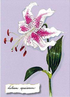 Flowers761
