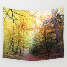 MM - Autumnally forest path Wall Tapestry Landscape, fall, path, way, road, broadleaf forest, soft light, autumn, yellow, trees, nature, fauna