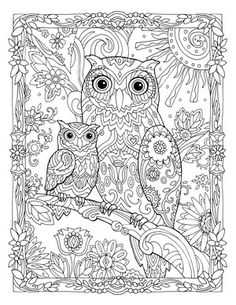Creative Haven Owls Colouring Book By Marjorie Sarnat Owl And Baby
