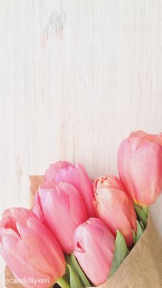 Cute Flower Tupils Pink with wood background wallpaper you can download for free on the blog! For any device; mobile, desktop, iphone, android!