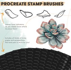Succulent Builder Procreate Brush Kit - Design Cuts Hard Part, Brush Kit, Planting Succulents, Vectors, Stamp, Fresh, Plants, Food, Design