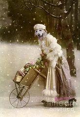 Christmas Art - Merry Christmas  by Martine Roch
