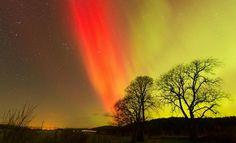 Northern Lights over Carrbridge, Inverness-shire, Scotland, Globepics/Twitter