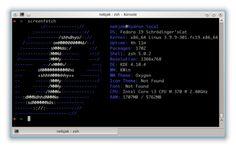 "Fedora 19 ""Schrödinger's Cat""  Cat is alive, and damn it's fast!"