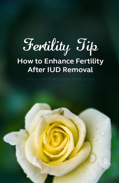 If you've ever had a conversation with your doctor about birth control to prevent conception (versus manage the symptoms of a fertility health issue), you are likely to have heard of the option called an IUD, or intrauterine device.  #naturalfertility #infertility #fertility #NaturalFertilityInfo