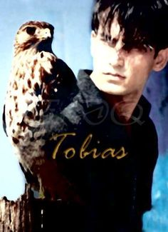 Again, super obvious, but to neglect ultra-sensitive forever-hawk Tobias would be criminal.