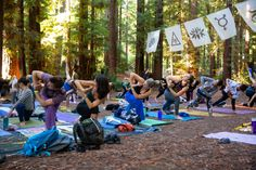 OM Rising is an intimate gathering of Yoga + Music + Nature August in Camp Navarro in Mendocino, CA. Camp Navarro, Food Vouchers, Picnic Items, Sound Bath, Yoga Nidra, Yoga Music, One Wave, Practice Yoga, Cozy Cabin