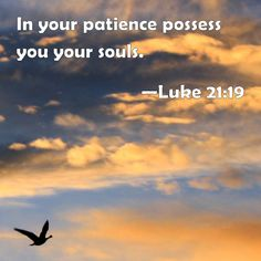 Luke 21:19 In your patience possess you your souls.