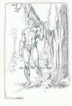 Tarzan , in Dennis De Pues's John(Blood and Guts)Buscema Comic Art Gallery Room Comic Book Artists, Comic Book Characters, Comic Artist, Comic Character, Comic Books Art, Tarzan, Thor, Comic Book Layout, John Buscema