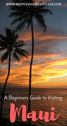A Beginners Guide to Visiting Maui - Antipodean Adventurer Hawaii Honeymoon, Hawaii Vacation, Maui Hawaii, Honeymoon Ideas, Vacation Spots, Maui Travel, Mexico Travel, Travel Destinations, Summer Travel