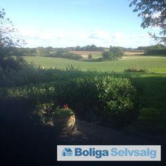 Mosevej 24, 5560 Aarup - Lille gård midt i unik natur #landejendom #naturperle #fynerfin  #fyn #jagt #jagtejendom #aarup #selvsalg #boligsalg #boligdk