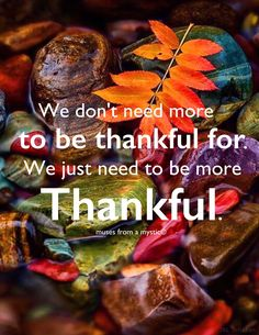 """""""We don't need more to be thankful for. We just need to be more thankful. Love Quotes For Her, Cute Love Quotes, Great Quotes, Grateful Quotes Gratitude, Grateful Heart, Gratitude Ideas, Attitude Of Gratitude Quotes, Deep Relationship Quotes, Secret Crush Quotes"""