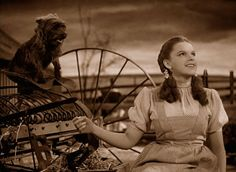 """Somewhere over the rainbow, skies are blue, and the dreams that you dare to dream really do come true""-Judy Garland ""The Wizard of Oz"" Judy Garland, Old Movies, Great Movies, Excellent Movies, Movies Showing, Movies And Tv Shows, Movies Wallpaper, Movie Stars, Movie Tv"