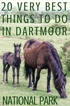 20 very best things to do in Dartmoor National Park, Devon, England: what to see, where to go, where to stay and what to eat while on Dartmoor! England And Scotland, Devon England, Scotland Trip, Highlands Scotland, Skye Scotland, Yorkshire England, Yorkshire Dales, Exeter England, Oxford England