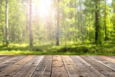 25 Incredible Facts about Wood